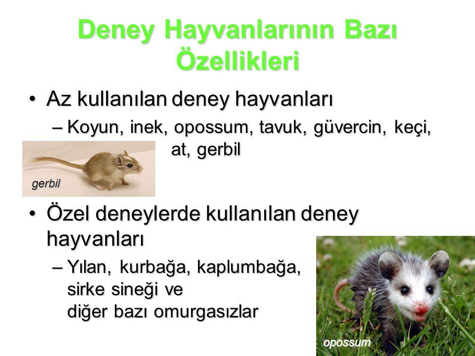 Deney Hayvanlarının Bazı Özellikleri Az kullanılan deney hayvanlarıAz kullanılan deney hayvanları –Koyun, inek, opossum, tavuk, güvercin, keçi, at, ge