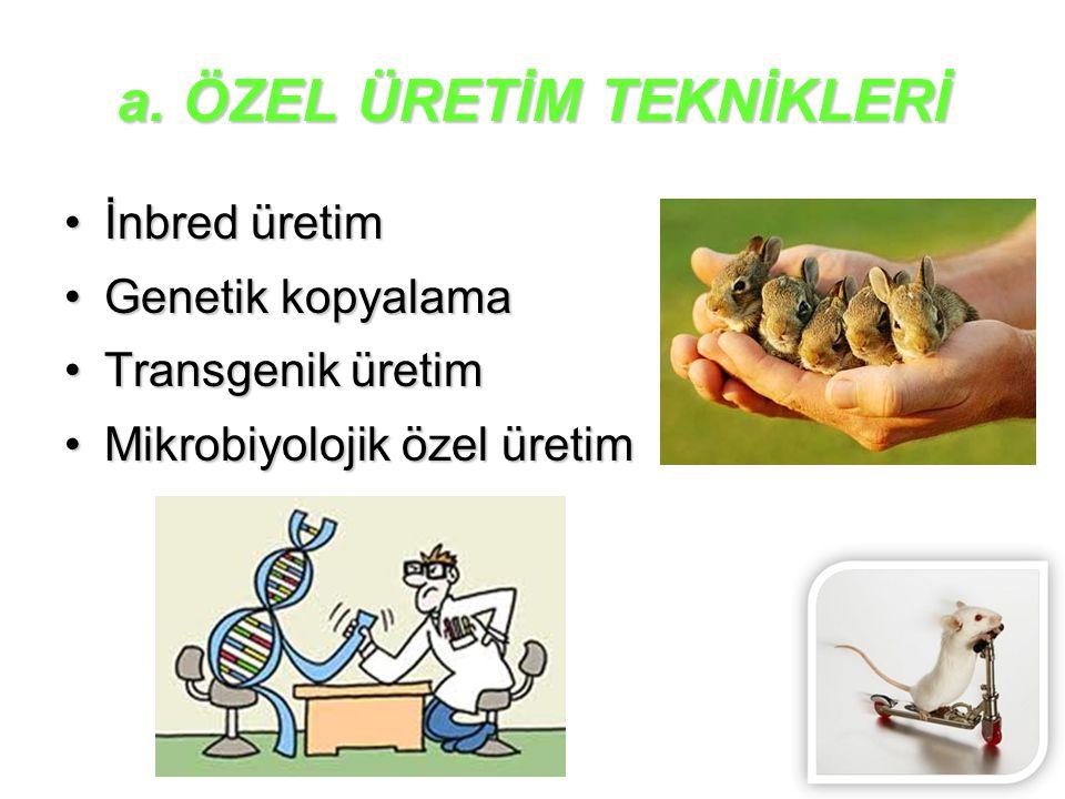 a. ÖZEL ÜRETİM TEKNİKLERİ İnbred üretimİnbred üretim Genetik kopyalamaGenetik kopyalama Transgenik üretimTransgenik üretim Mikrobiyolojik özel üretimM