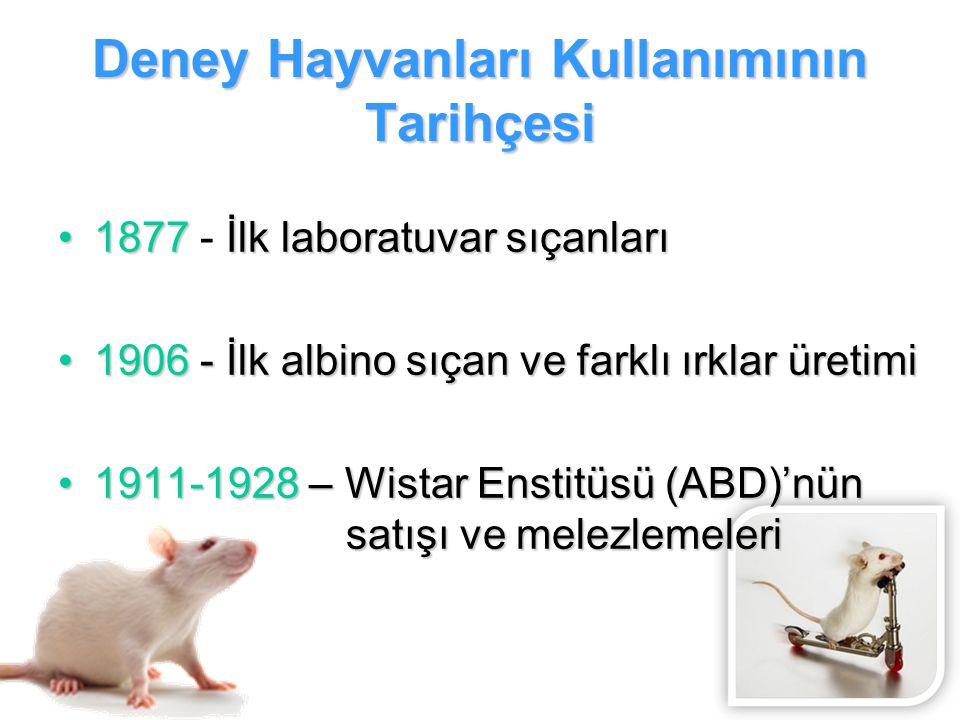 Deney Hayvanları Kullanımının Tarihçesi 1877İlk laboratuvar sıçanları1877 - İlk laboratuvar sıçanları 1906 - İlk albino sıçan ve farklı ırklar üretimi
