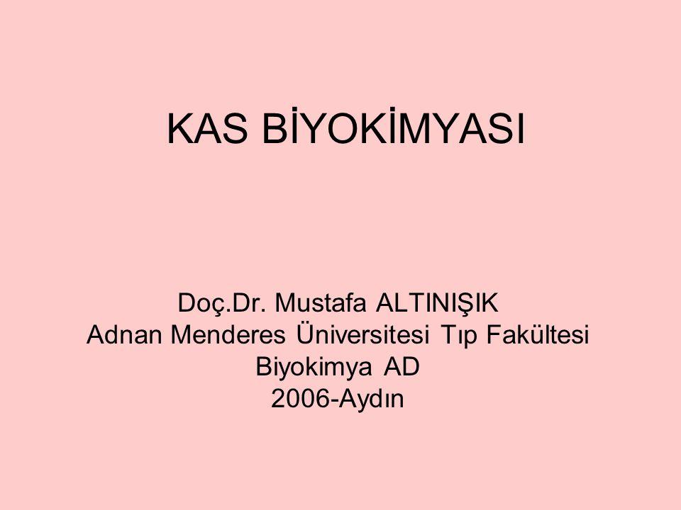 KAS BİYOKİMYASI Doç.Dr. Mustafa ALTINIŞIK Adnan Menderes Üniversitesi Tıp Fakültesi Biyokimya AD 2006-Aydın