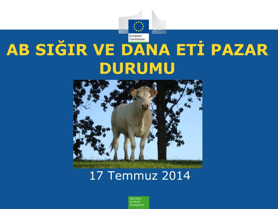 AB SIĞIR VE DANA ETİ PAZAR DURUMU 17 Temmuz 2014