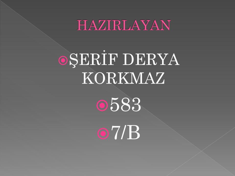  ŞERİF DERYA KORKMAZ  583  7/B