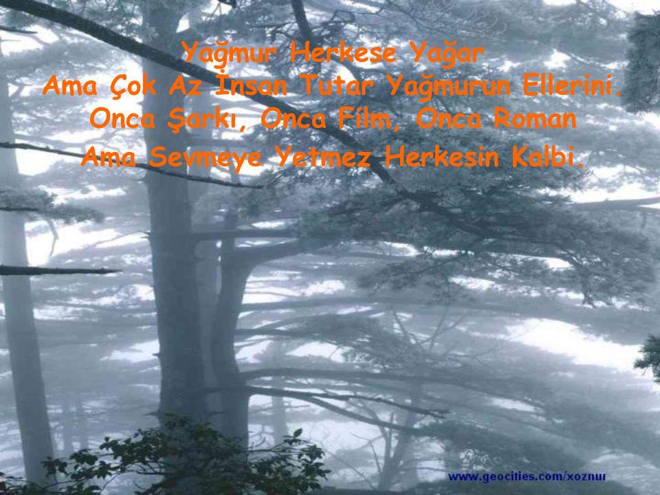 Yağmur Herkese Yağar Ama Çok Az İnsan Tutar Yağmurun Ellerini. Onca Şarkı, Onca Film, Onca Roman Ama Sevmeye Yetmez Herkesin Kalbi.