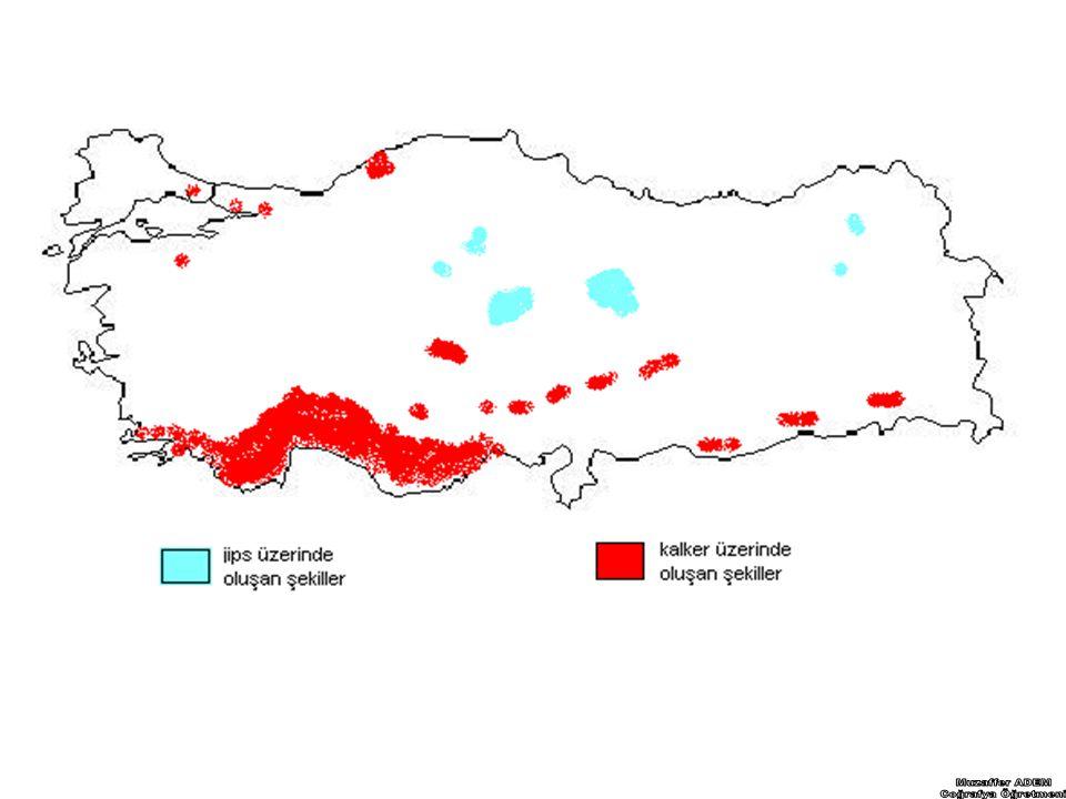 TÜRKİYE'DE DALGALARIN OLUŞTURDUĞU ŞEKİLLER VE KIYI TİPLERİ 1- Falez(yalıyar) : Dağların denize paralel uzandığı yerlerde yaygındır.