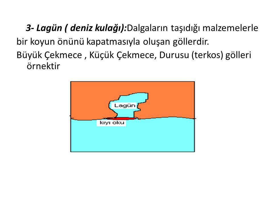 3- Lagün ( deniz kulağı):Dalgaların taşıdığı malzemelerle bir koyun önünü kapatmasıyla oluşan göllerdir. Büyük Çekmece, Küçük Çekmece, Durusu (terkos)