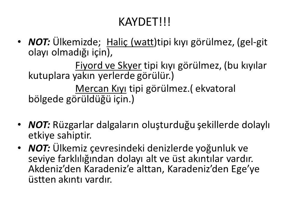 KAYDET!!.