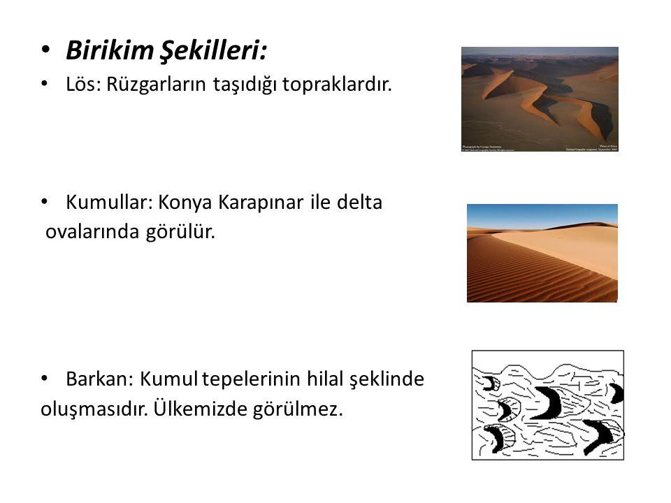 Birikim Şekilleri: Lös: Rüzgarların taşıdığı topraklardır. Kumullar: Konya Karapınar ile delta ovalarında görülür. Barkan: Kumul tepelerinin hilal şek