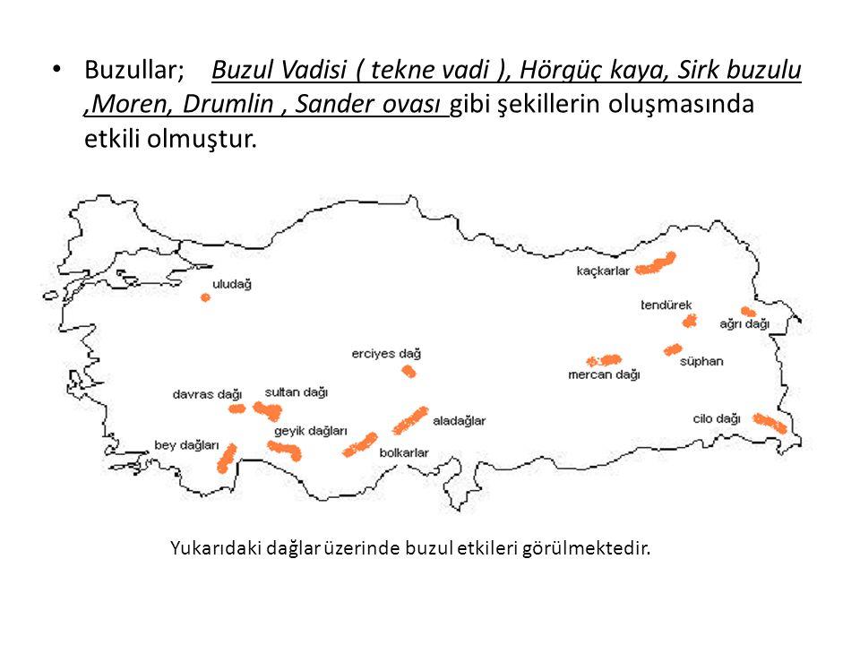 Buzullar; Buzul Vadisi ( tekne vadi ), Hörgüç kaya, Sirk buzulu,Moren, Drumlin, Sander ovası gibi şekillerin oluşmasında etkili olmuştur. Yukarıdaki d
