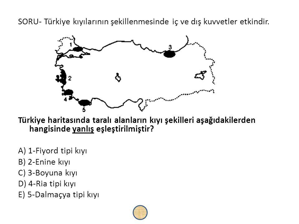 SORU- Türkiye kıyılarının şekillenmesinde iç ve dış kuvvetler etkindir. Türkiye haritasında taralı alanların kıyı şekilleri aşağıdakilerden hangisinde