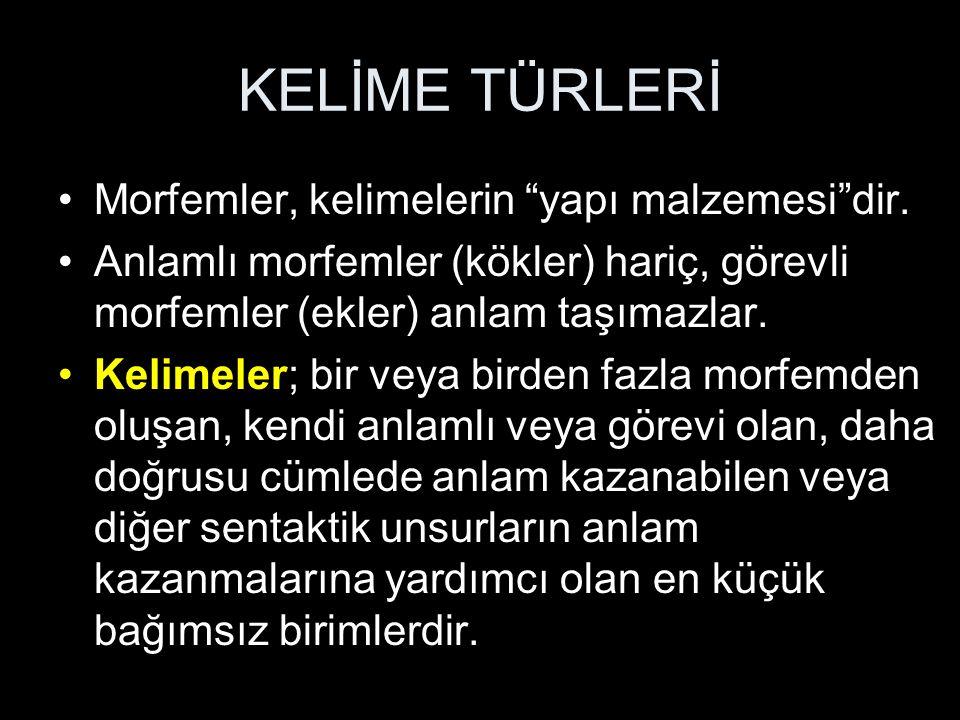 İSİMLERİN SINIFLANDIRILMASI 2.