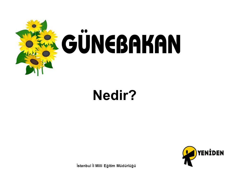 Nedir? İstanbul İl Milli Eğitim Müdürlüğü
