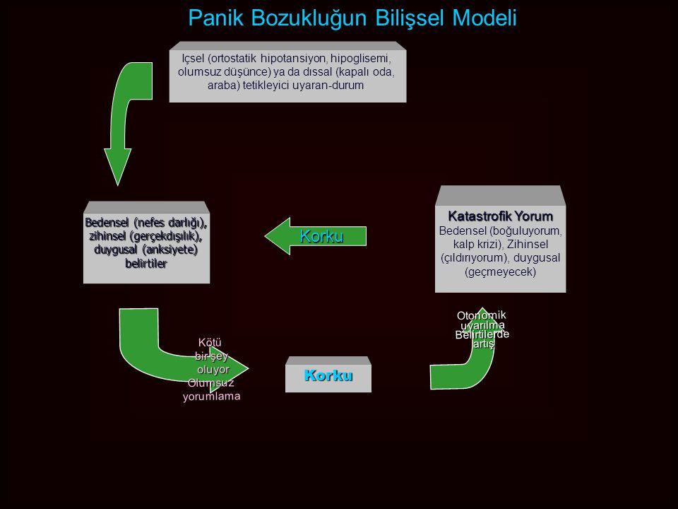 Panik Bozukluk Tedavi Algoritması İzole Tek Panik Atak:İzole Tek Panik Atak: –Organisite (Kardiyovaskuler sorun, Tiroid, Feokromasitoma, kafeinizm, alkol, ilaç), Başka Psikiyatrik Bozukluk; Panik bozuklukPanik bozukluk –Bilgilendirme ve dikkatli biçimde izleme –Kognitif Davranışçı Tedavi –İlaç Tedavisi