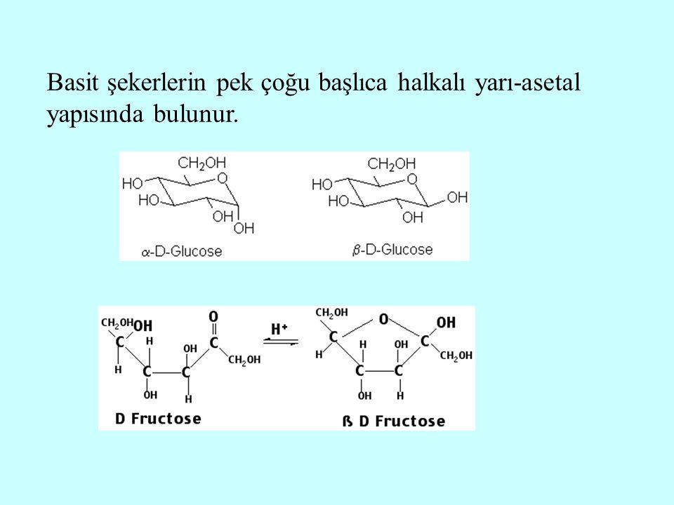 Basit şekerlerin pek çoğu başlıca halkalı yarı-asetal yapısında bulunur.