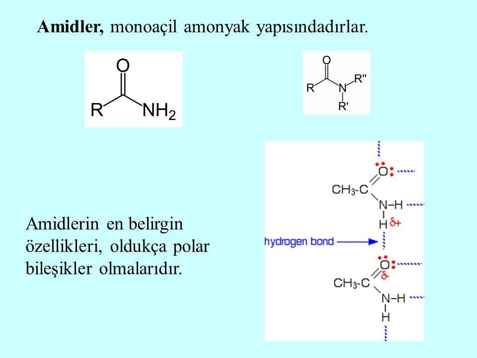 Amidler, monoaçil amonyak yapısındadırlar. Amidlerin en belirgin özellikleri, oldukça polar bileşikler olmalarıdır.
