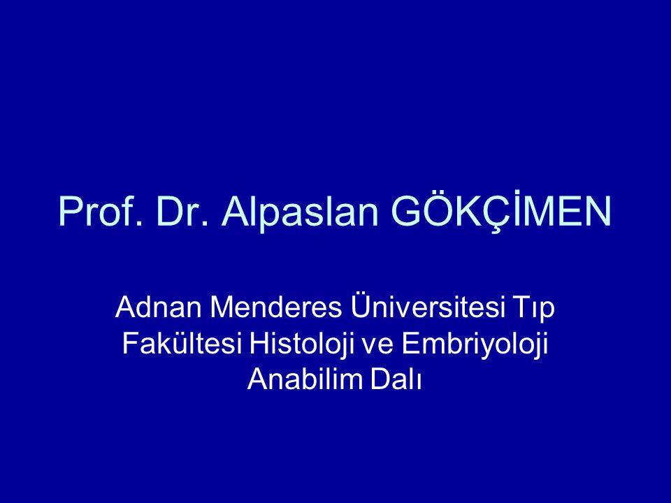 Prof. Dr. Alpaslan GÖKÇİMEN Adnan Menderes Üniversitesi Tıp Fakültesi Histoloji ve Embriyoloji Anabilim Dalı