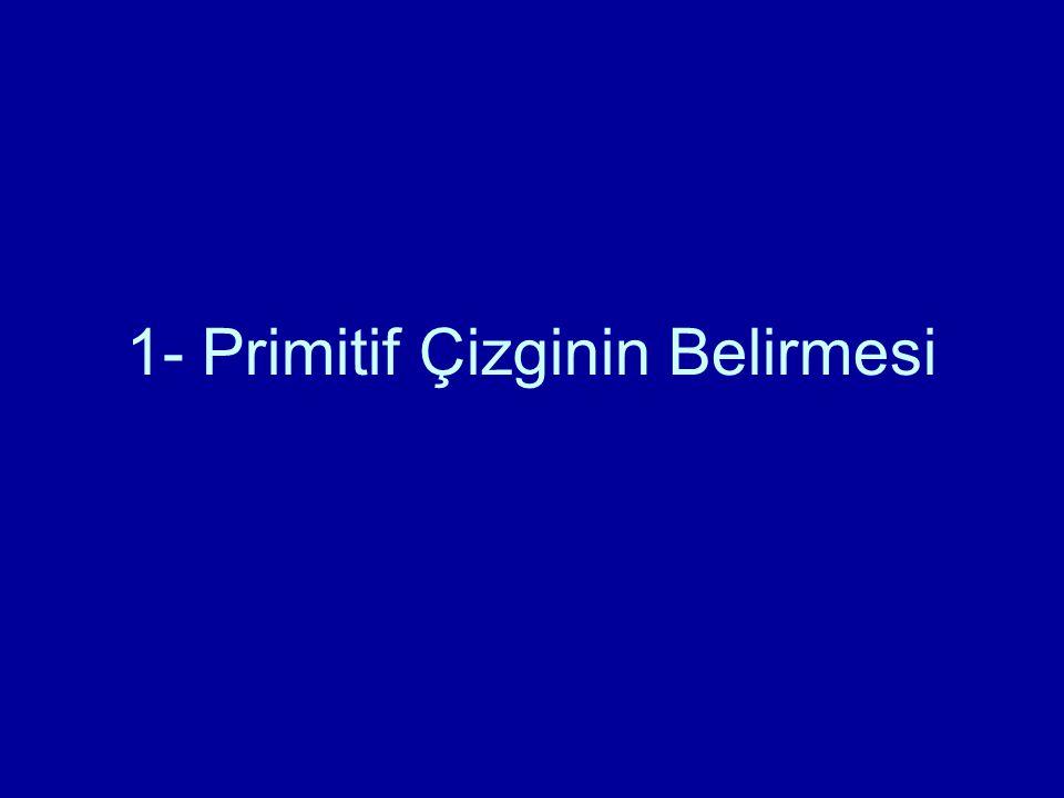 1- Primitif Çizginin Belirmesi