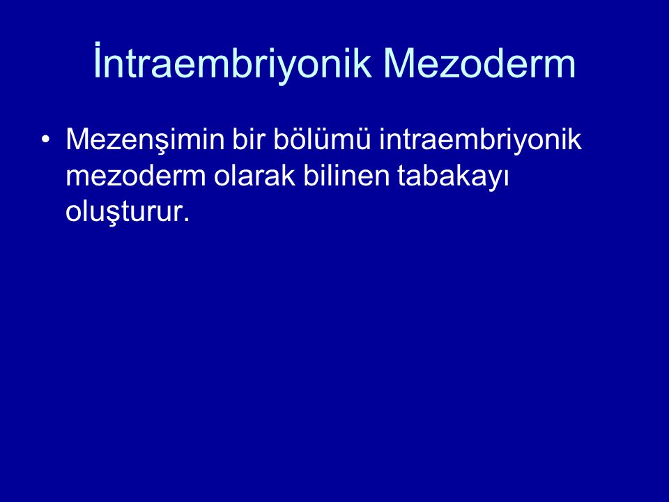 İntraembriyonik Mezoderm Mezenşimin bir bölümü intraembriyonik mezoderm olarak bilinen tabakayı oluşturur.