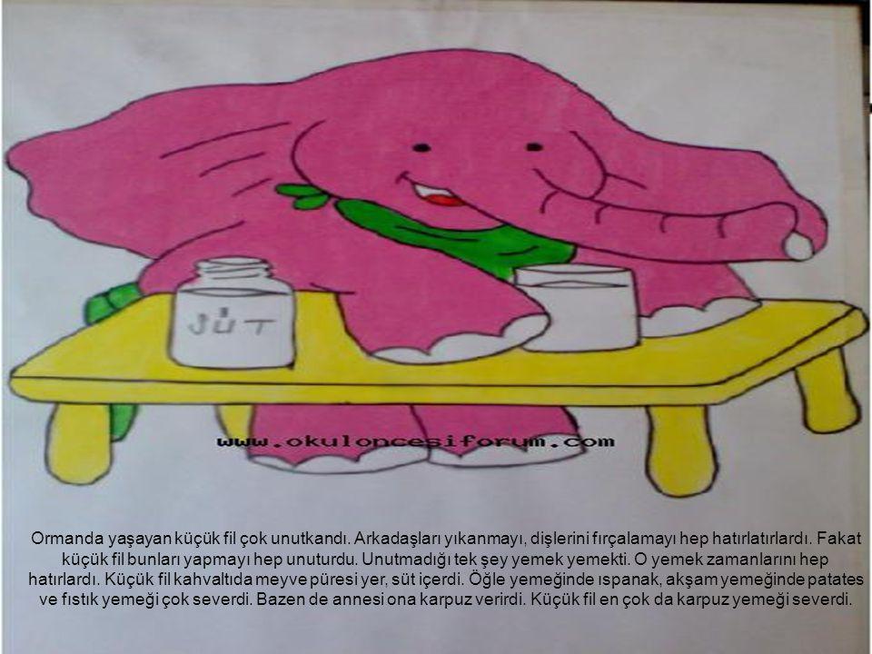 Ormanda yaşayan küçük fil çok unutkandı. Arkadaşları yıkanmayı, dişlerini fırçalamayı hep hatırlatırlardı. Fakat küçük fil bunları yapmayı hep unuturd
