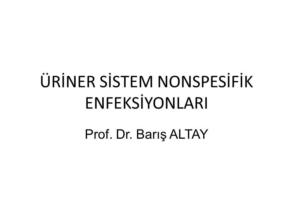 ÜRİNER SİSTEM NONSPESİFİK ENFEKSİYONLARI Prof. Dr. Barış ALTAY