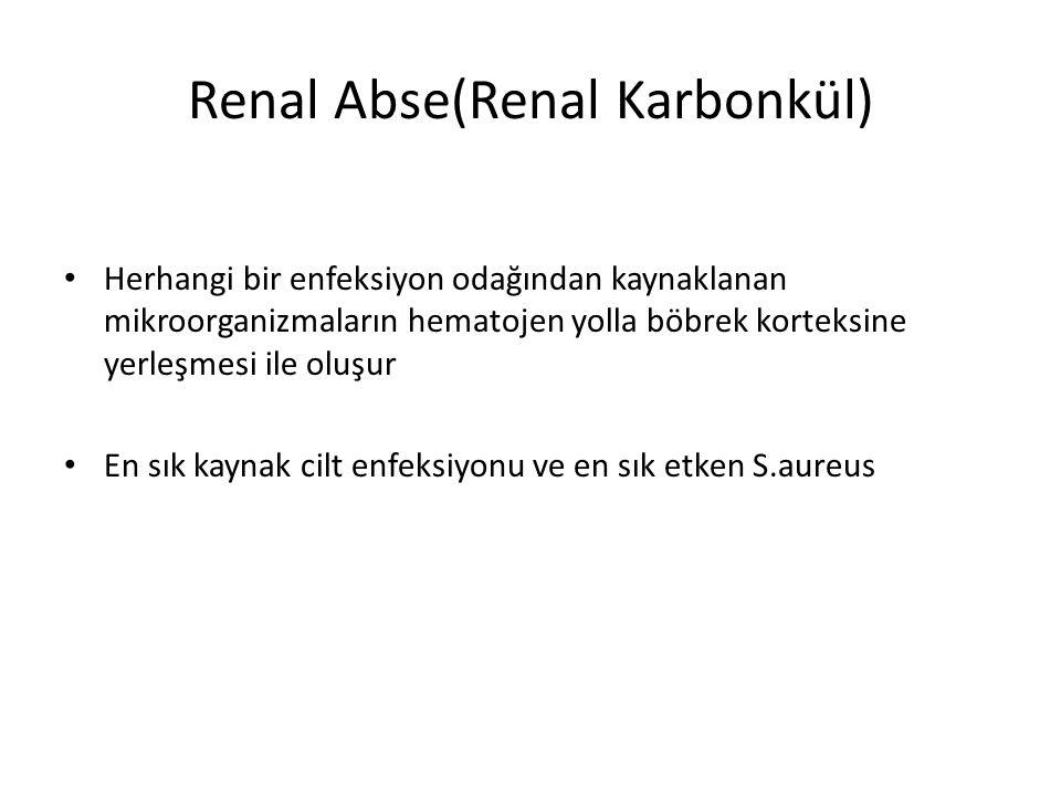 Renal Abse(Renal Karbonkül) Herhangi bir enfeksiyon odağından kaynaklanan mikroorganizmaların hematojen yolla böbrek korteksine yerleşmesi ile oluşur