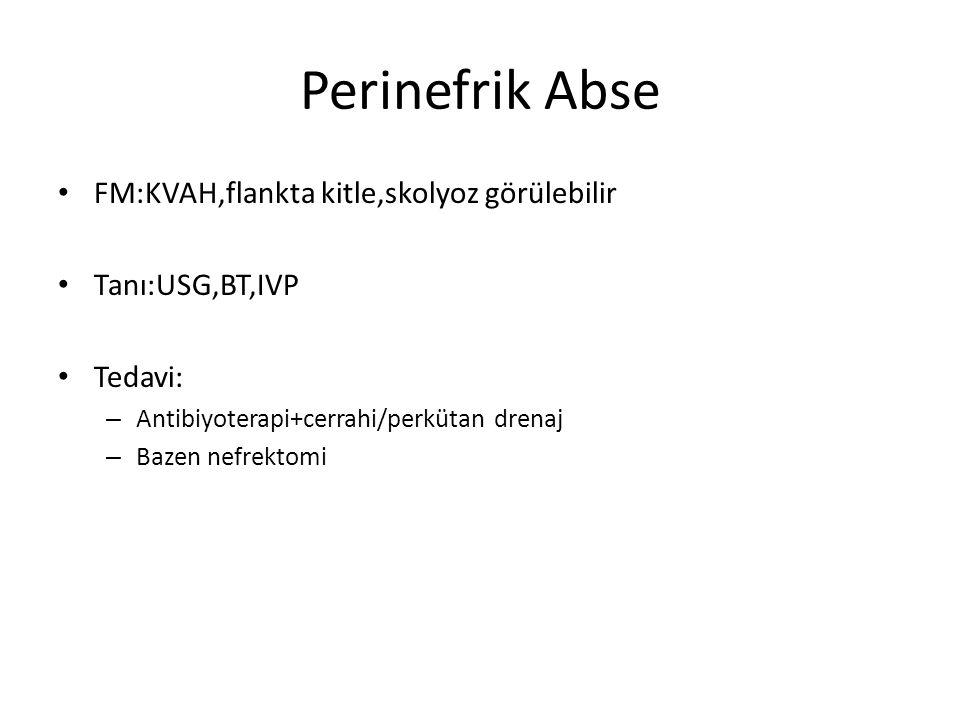 Perinefrik Abse FM:KVAH,flankta kitle,skolyoz görülebilir Tanı:USG,BT,IVP Tedavi: – Antibiyoterapi+cerrahi/perkütan drenaj – Bazen nefrektomi