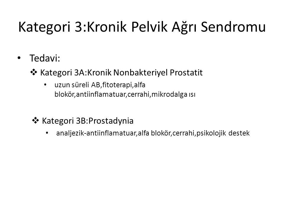 Kategori 3:Kronik Pelvik Ağrı Sendromu Tedavi:  Kategori 3A:Kronik Nonbakteriyel Prostatit uzun süreli AB,fitoterapi,alfa blokör,antiinflamatuar,cerr