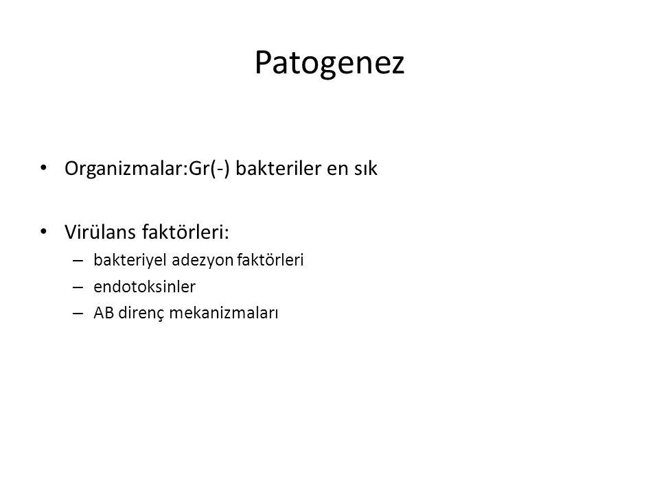 Patogenez Organizmalar:Gr(-) bakteriler en sık Virülans faktörleri: – bakteriyel adezyon faktörleri – endotoksinler – AB direnç mekanizmaları