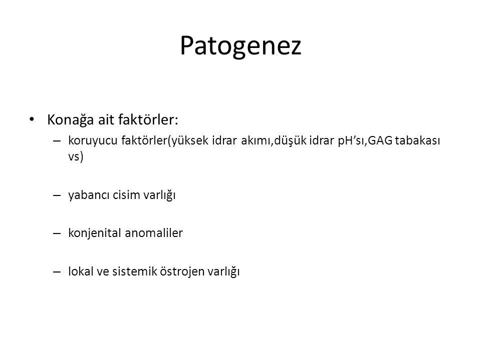 Patogenez Konağa ait faktörler: – koruyucu faktörler(yüksek idrar akımı,düşük idrar pH'sı,GAG tabakası vs) – yabancı cisim varlığı – konjenital anomal