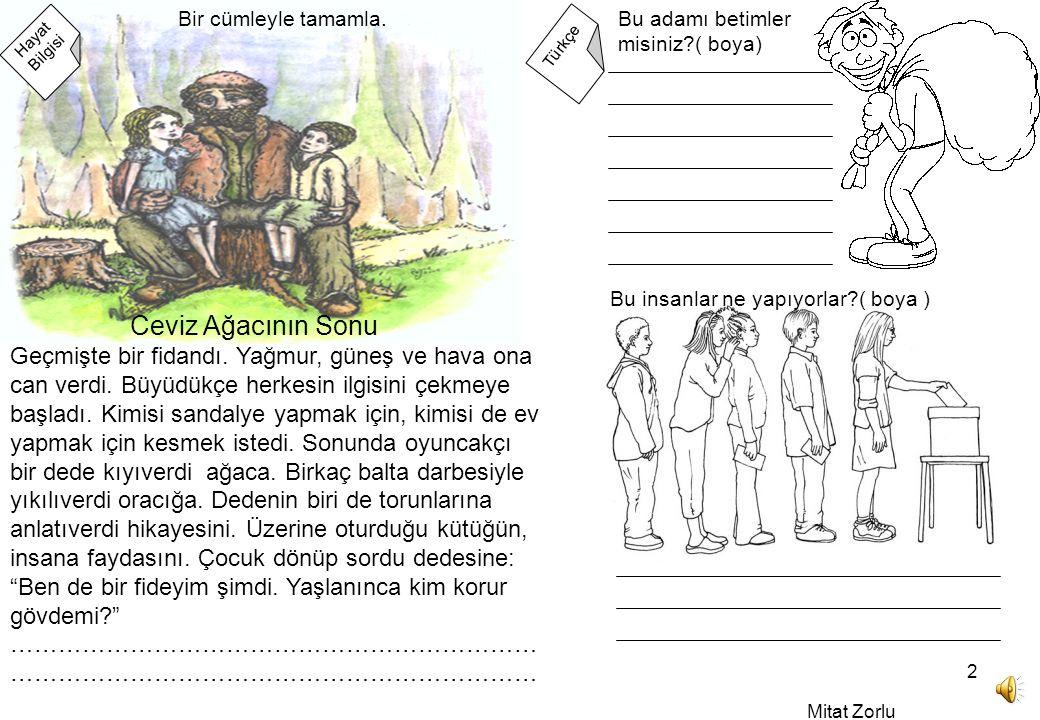 Mitat Zorlu 2 Hayat Bilgisi Türkçe Geçmişte bir fidandı.