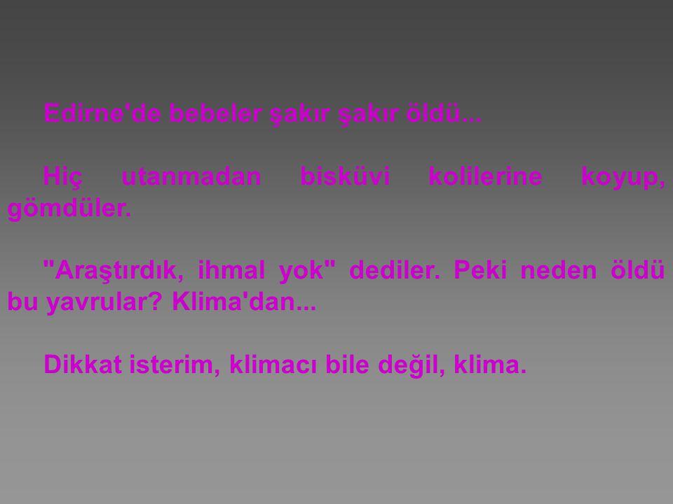Edirne'de bebeler şakır şakır öldü... Hiç utanmadan bisküvi kolilerine koyup, gömdüler.