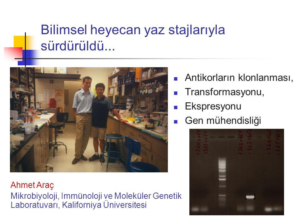 Bilimsel heyecan yaz stajlarıyla sürdürüldü... Antikorların klonlanması, Transformasyonu, Ekspresyonu Gen mühendisliği Ahmet Araç Mikrobiyoloji, Immün