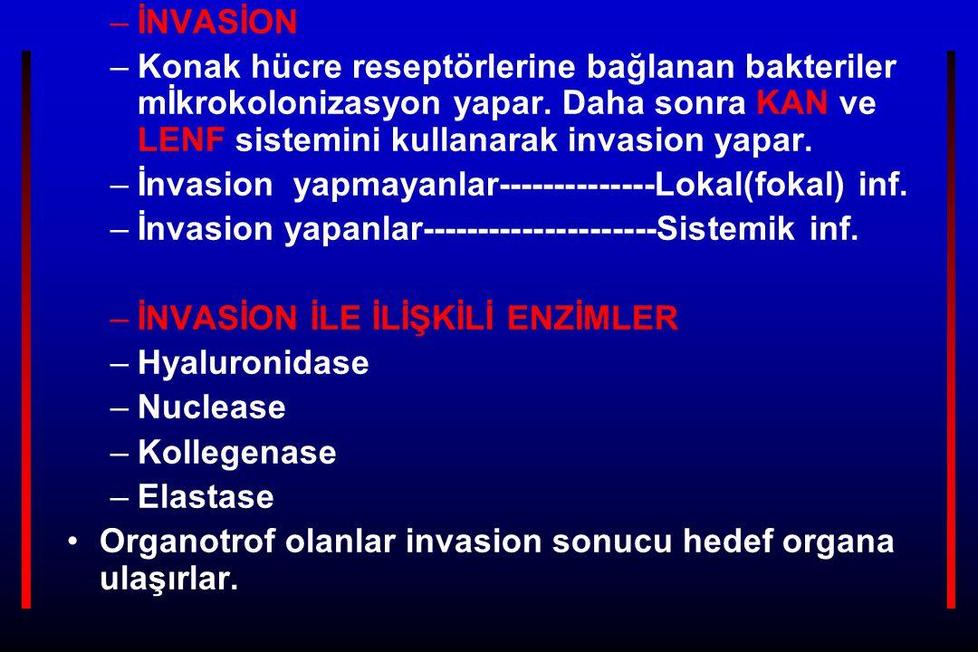 EKZOTOKSİN –Canlı hücreden salınır –Gr(+)veGr(-) bakterilerden salınır –Protein yapısındadır –Isıya dayanıksızdır –Kuvvetli antijenik –Toxoid şekle dönüşür –Kuvvetli toksindir –Hücrelerde spesifik reseptöre bağlanır –Genellikle konakta ateş yapmaz –Ekstrakromozomal genlerle yönetilir – ENDOTOKSİN –Gr.