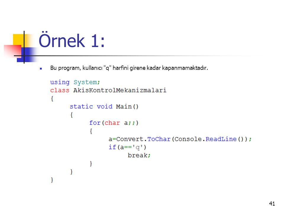 Örnek 1: Bu program, kullanıcı