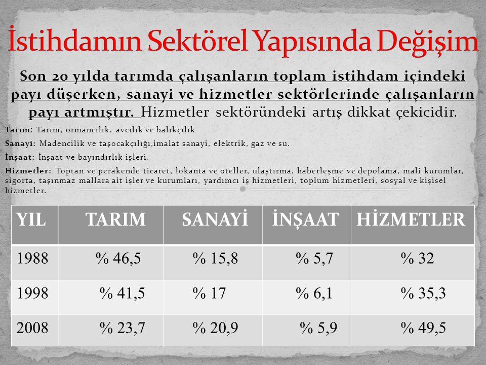 a) Türkiye'de cinsiyete dayalı işbölümü ağırlığını hissettirmektedir.