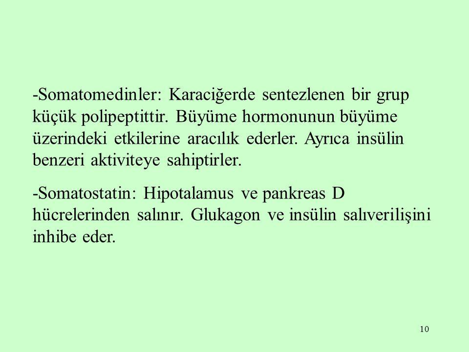 10 -Somatomedinler: Karaciğerde sentezlenen bir grup küçük polipeptittir. Büyüme hormonunun büyüme üzerindeki etkilerine aracılık ederler. Ayrıca insü