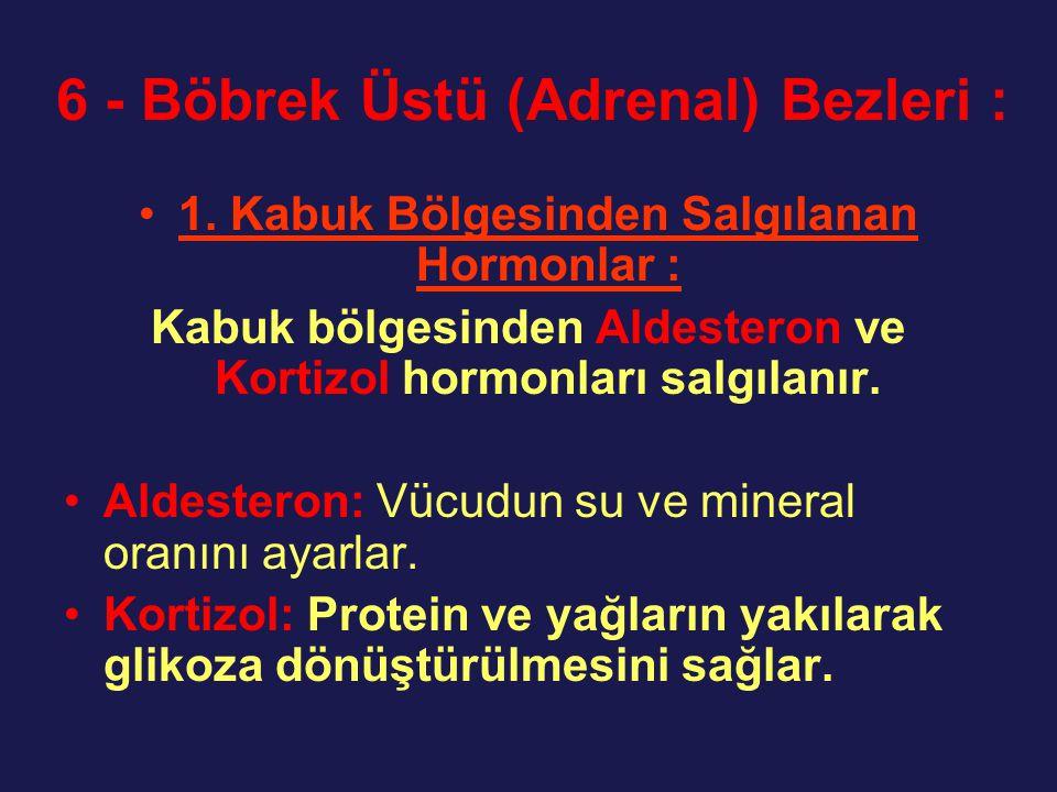 6 - Böbrek Üstü (Adrenal) Bezleri : 1. Kabuk Bölgesinden Salgılanan Hormonlar : Kabuk bölgesinden Aldesteron ve Kortizol hormonları salgılanır. Aldest