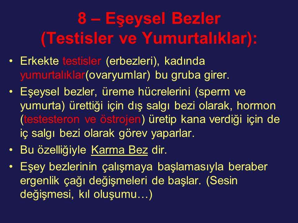 8 – Eşeysel Bezler (Testisler ve Yumurtalıklar): Erkekte testisler (erbezleri), kadında yumurtalıklar(ovaryumlar) bu gruba girer. Eşeysel bezler, ürem