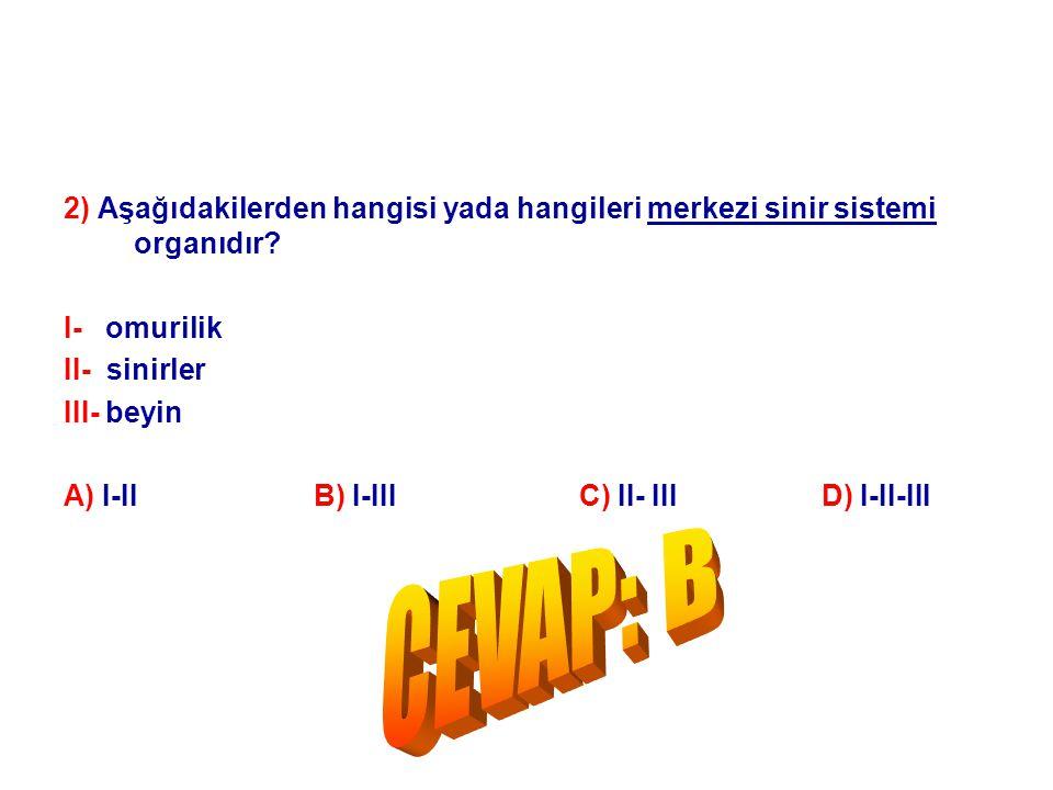 2) Aşağıdakilerden hangisi yada hangileri merkezi sinir sistemi organıdır? I- omurilik II- sinirler III- beyin A) I-II B) I-III C) II- III D) I-II-III