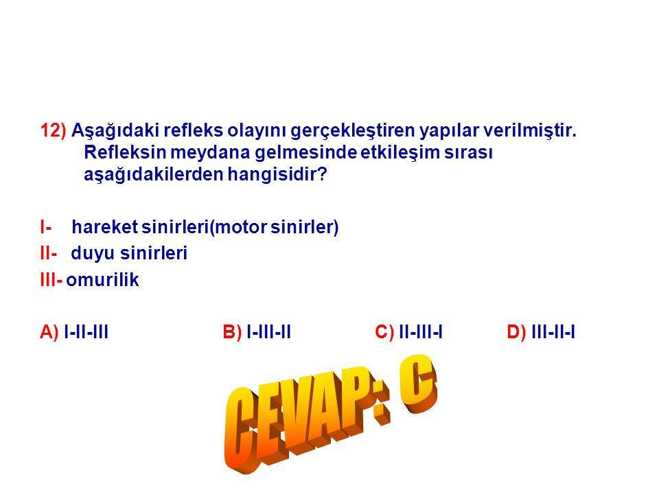 12) Aşağıdaki refleks olayını gerçekleştiren yapılar verilmiştir. Refleksin meydana gelmesinde etkileşim sırası aşağıdakilerden hangisidir? I- hareket