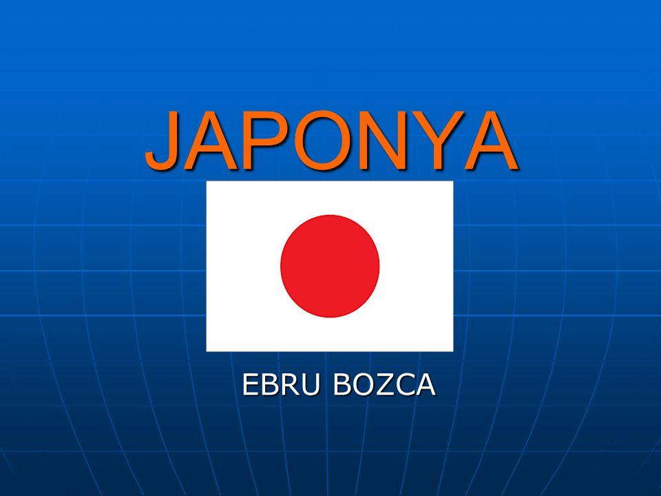 JAPONYA EBRU BOZCA