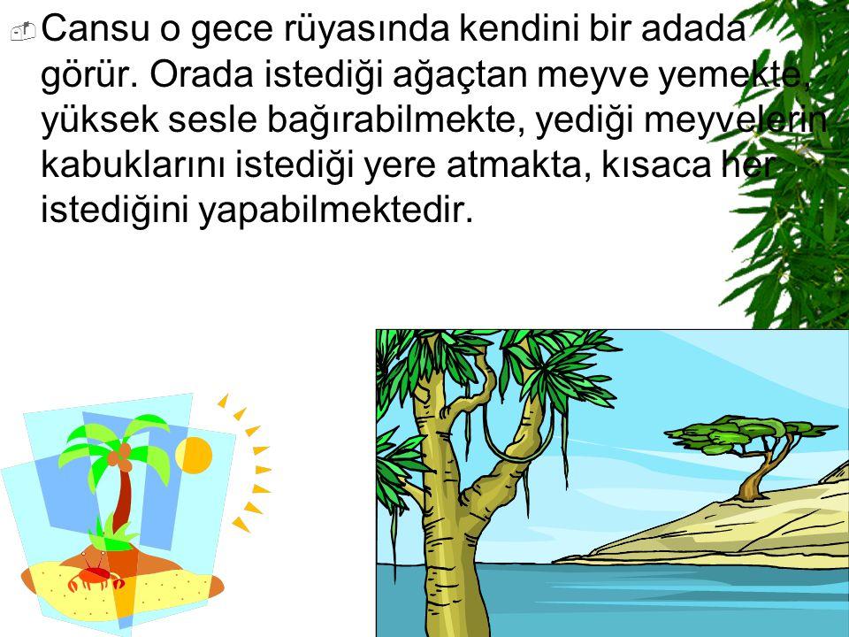  Cansu o gece rüyasında kendini bir adada görür. Orada istediği ağaçtan meyve yemekte, yüksek sesle bağırabilmekte, yediği meyvelerin kabuklarını ist