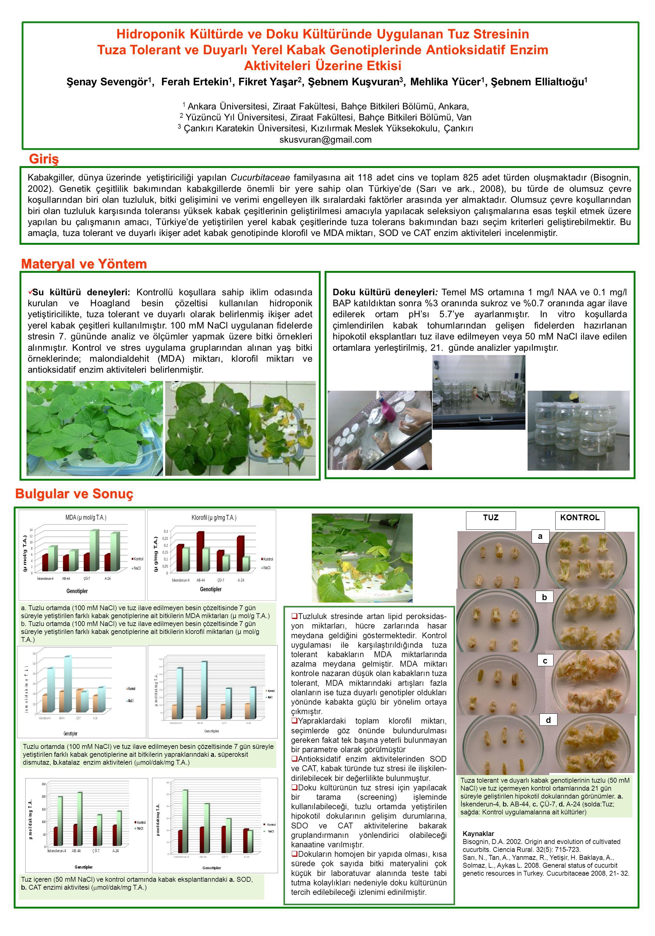 Kabakgiller, dünya üzerindeyetiştiriciliği yapılan Cucurbitaceae familyasına ait 118 adet cins ve toplam 825 adet türden oluşmaktadır (Bisognin, 2002).