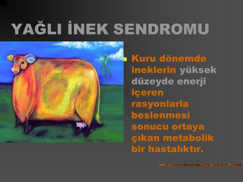 Nedenleri Kandaki Mg iyonlarının azalması K bakımından zengin, Mg bakımından fakir çayır otlarıyla besleme Hayvanın tam veya kısmen aç kalması Kötü hava koşulları