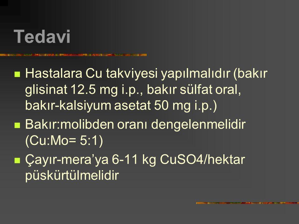 Tedavi Hastalara Cu takviyesi yapılmalıdır (bakır glisinat 12.5 mg i.p., bakır sülfat oral, bakır-kalsiyum asetat 50 mg i.p.) Bakır:molibden oranı dengelenmelidir (Cu:Mo= 5:1) Çayır-mera'ya 6-11 kg CuSO4/hektar püskürtülmelidir