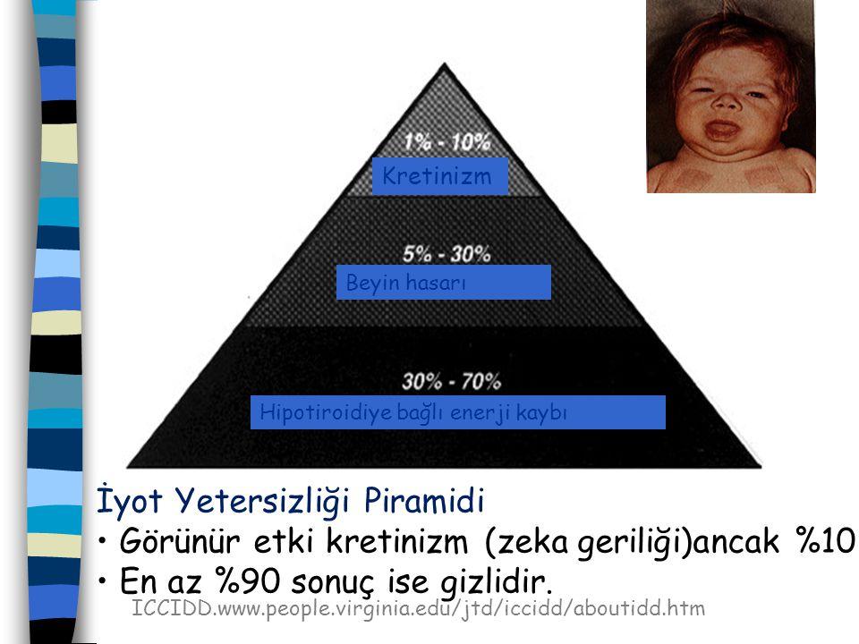 İyot Yetersizliği Piramidi Görünür etki kretinizm (zeka geriliği)ancak %10 En az %90 sonuç ise gizlidir.