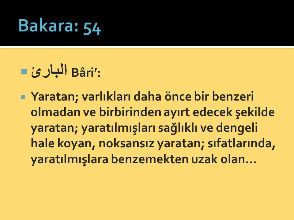  البارئ Bâri':  Yaratan; varlıkları daha önce bir benzeri olmadan ve birbirinden ayırt edecek şekilde yaratan; yaratılmışları sağlıklı ve dengeli ha