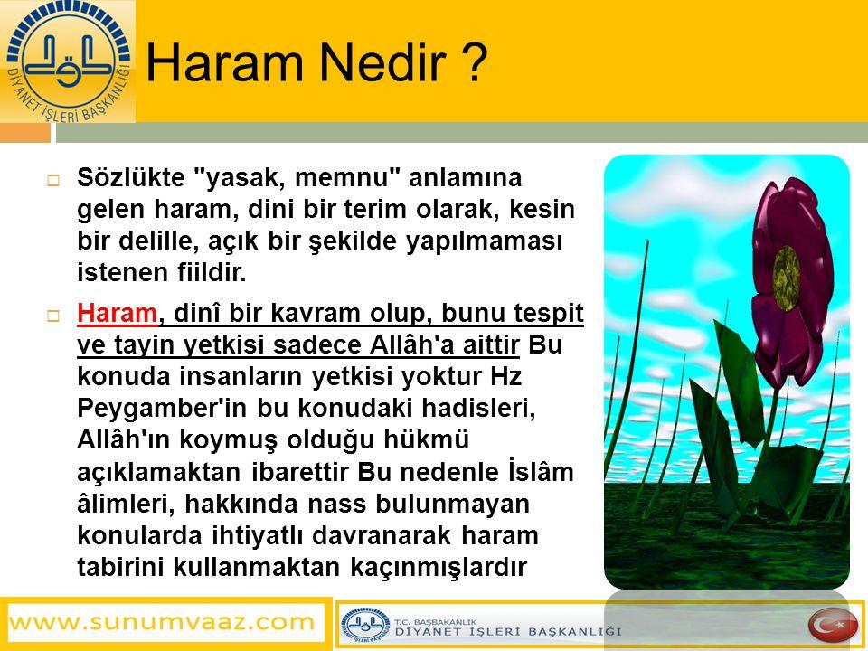 Haram Nedir ?  Sözlükte