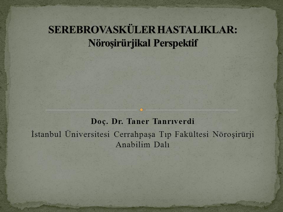 Doç. Dr. Taner Tanrıverdi İstanbul Üniversitesi Cerrahpaşa Tıp Fakültesi Nöroşirürji Anabilim Dalı