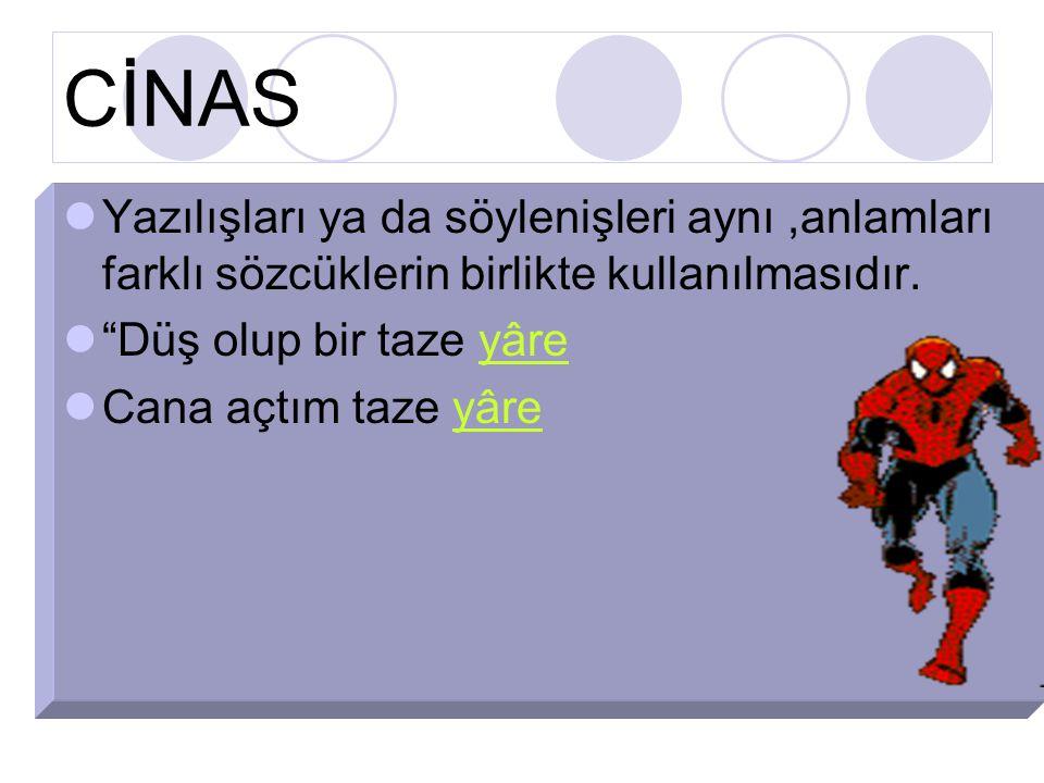 CİNAS Yazılışları ya da söylenişleri aynı,anlamları farklı sözcüklerin birlikte kullanılmasıdır.