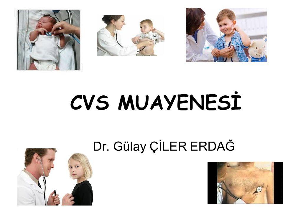 CVS MUAYENESİ Dr. Gülay ÇİLER ERDAĞ